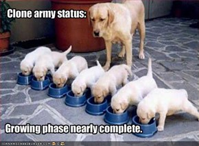 Clone army status: