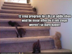 12 step program fer LOLcat addicshun