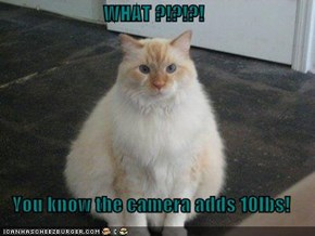 WHAT ?!?!?!  You know the camera adds 10lbs!