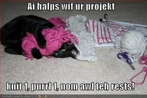 Ai halps wif ur projekt  knit 1, purrl 1, nom awl teh rests!