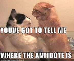 YOUVE GOT TO TELL ME WHERE THE ANTIDOTE IS