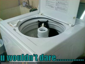 u wouldn't dare................