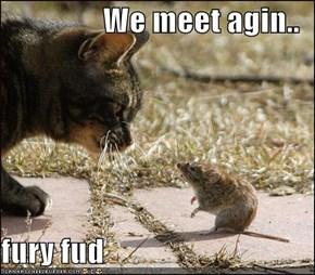 We meet agin..   fury fud