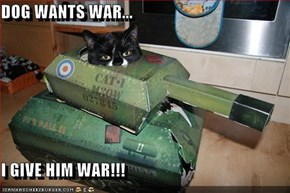 DOG WANTS WAR...  I GIVE HIM WAR!!!
