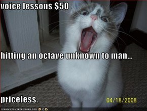 voice lessons $50 hitting an octave unknown to man... priceless.