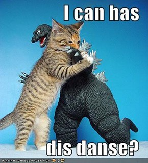 I can has  dis danse?