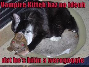 Vampire Kitteh haz no ideuh   dat he's bitin a weregoggie