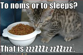 To noms or to sleeps?  That is zzzZZZz zzZZzzz..