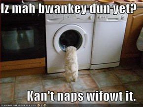 Iz mah bwankey dun yet?  Kan't naps wifowt it.