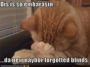 Dis is so embarasin...  ...da new naybor forgotted blinds.