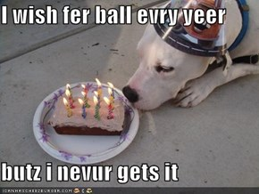I wish fer ball evry yeer  butz i nevur gets it