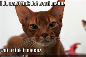 i du nawt tink dat word meenz  wut u tink it meenz.