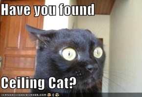 Have you found  Ceiling Cat?
