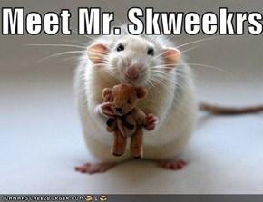 Meet Mr. Skweekrs