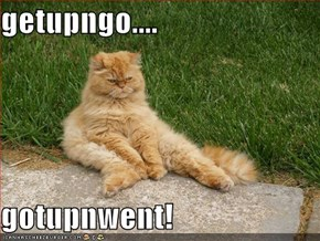 getupngo....  gotupnwent!