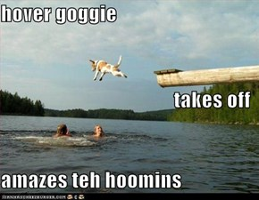 hover goggie takes off amazes teh hoomins