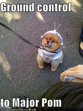 Ground control  to Major Pom