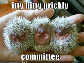 itty bitty prickly   committee