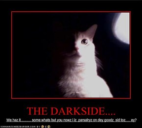 THE DARKSIDE....