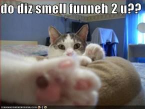 do diz smell funneh 2 u??