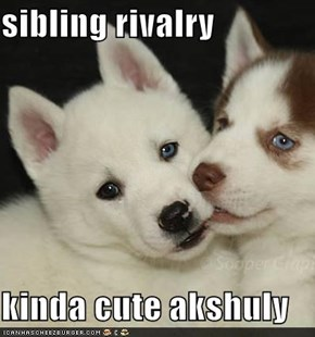 sibling rivalry  kinda cute akshuly