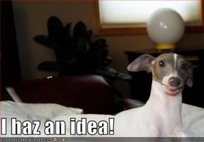 I haz an idea!