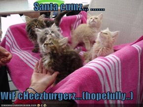 Santa cumz... .......  WiF cHeezburgerz...(hopefully..)