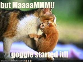 but MaaaaMMM!!  goggie started it!!
