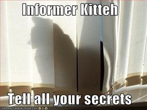 Informer Kitteh  Tell all your secrets