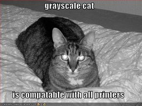 grayscale cat  is compatable with all printers