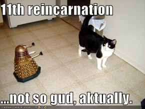 11th reincarnation  ...not so gud, aktually.