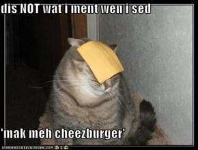 dis NOT wat i ment wen i sed  'mak meh cheezburger'