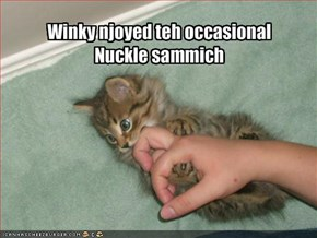 Winky njoyed teh occasional Nuckle sammich