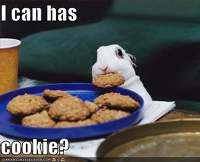I can has  cookie?