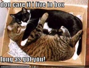don care if i live in box  long as got you!