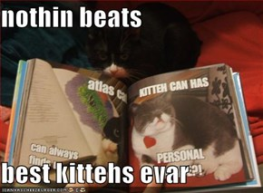 nothin beats  best kittehs evar