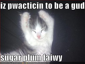 iz pwacticin to be a gud  sugar plum faiwy
