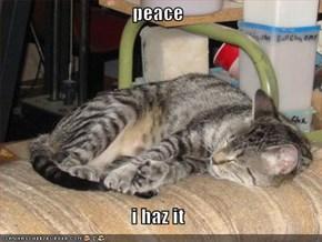 peace  i haz it