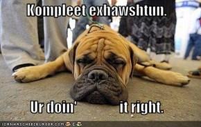 Kompleet exhawshtun.  Ur doin'                it right.