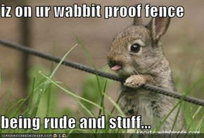 iz on ur wabbit proof fence  being rude and stuff...