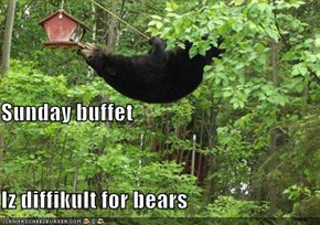 Sunday buffet Iz diffikult for bears