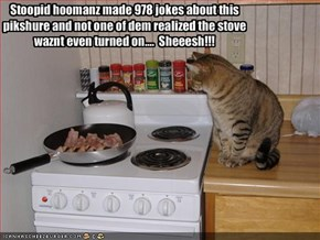 Stoopid hoomanz made 978 jokes about this
