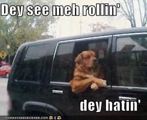 Dey see meh rollin'  dey hatin'
