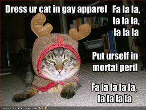 Dress ur cat in gay apparel