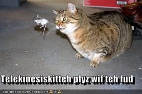 Telekinesiskitteh plyz wif teh fud