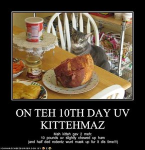 ON TEH 10TH DAY UV KITTEHMAZ