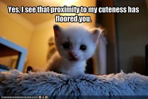 Yes, I see that proximity to my cuteness has floored you.