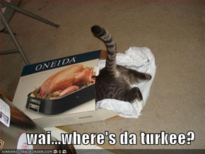 wai...where's da turkee?