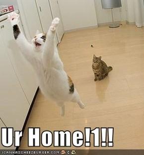 Ur Home!1!!