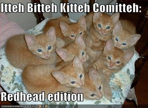 Itteh Bitteh Kitteh Comitteh:  Redhead edition